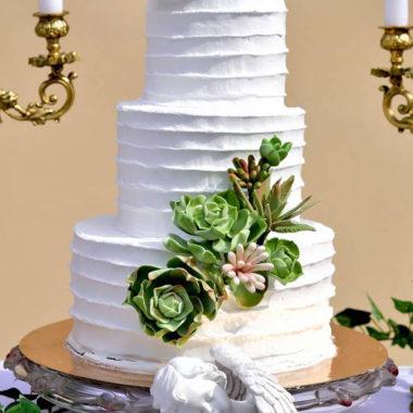 Trijų aukštų tortas su sukulentais