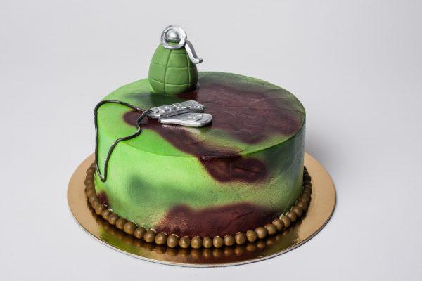 """Vaikiškas tortas """"Kamufliažinis"""""""