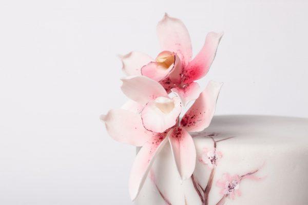 3a tortas su orchidėjom
