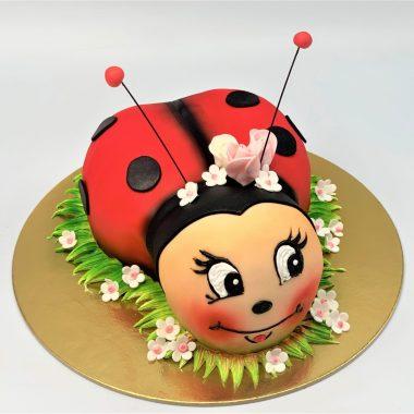 """Vaikiškas tortas """"Boružėlė 2"""""""