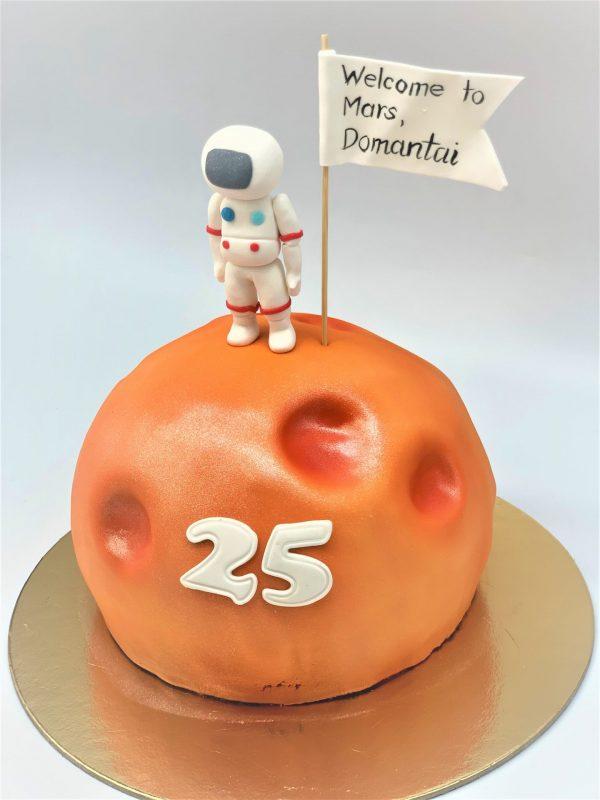 """Vaikiškas tortas """"Sveiki atvykę į Marsą"""""""